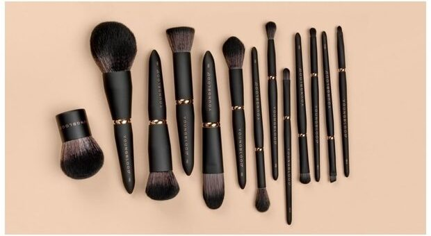 different typee of make up brushes